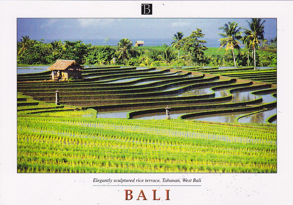 My UNESCO World Heritage Postcards: Indonesia  Cultural Landscape of Bali Province: the Subak