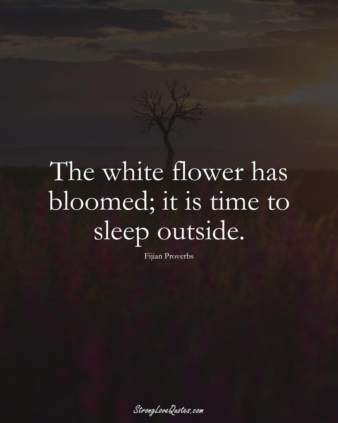 The white flower has bloomed; it is time to sleep outside. (Fijian Sayings);  #AustralianSayings