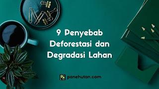 9 Penyebab Deforestasi dan Degradasi Lahan