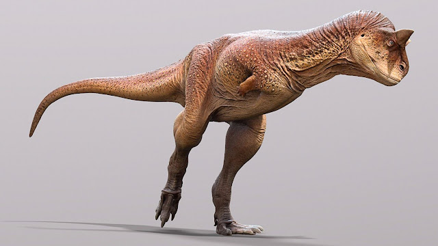 Scientists reveal the fossilised skin of a bull-like carnivorous dinosaur