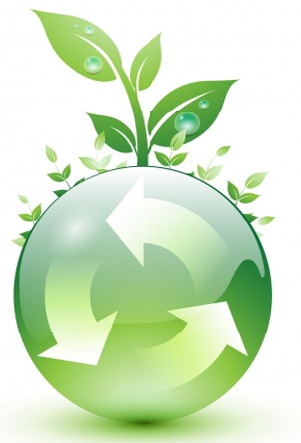 My Sustainability Goals