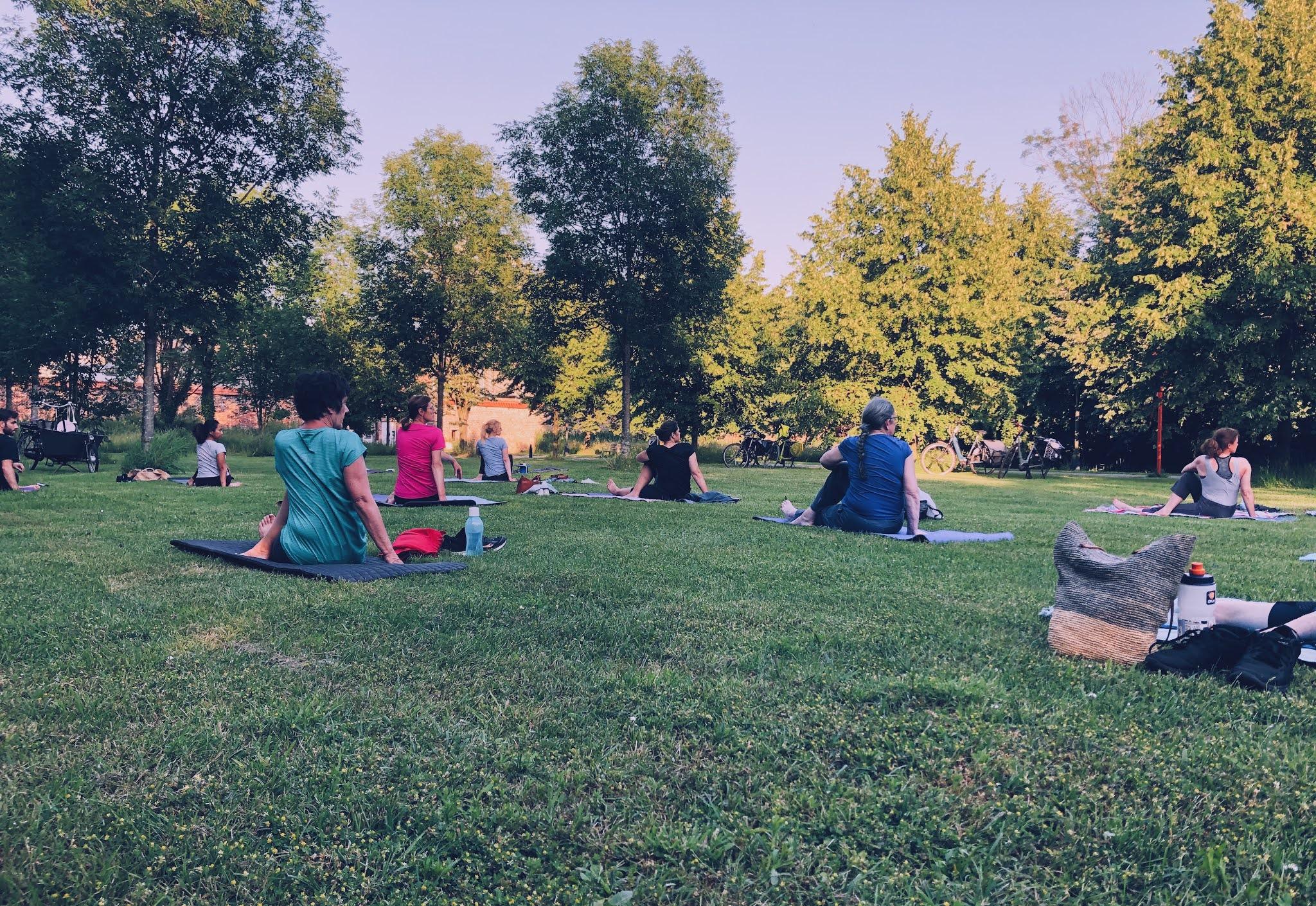 Groepsles yoga in het gras