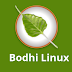 Bodhi Linux 4.3.1 fixes a major issue in v4.3.0