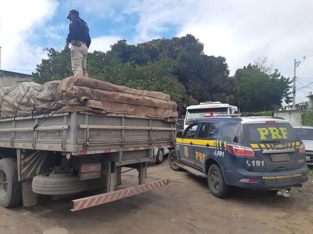 PRF apreende mais de 5 toneladas de maconha em caminhão na BR-116