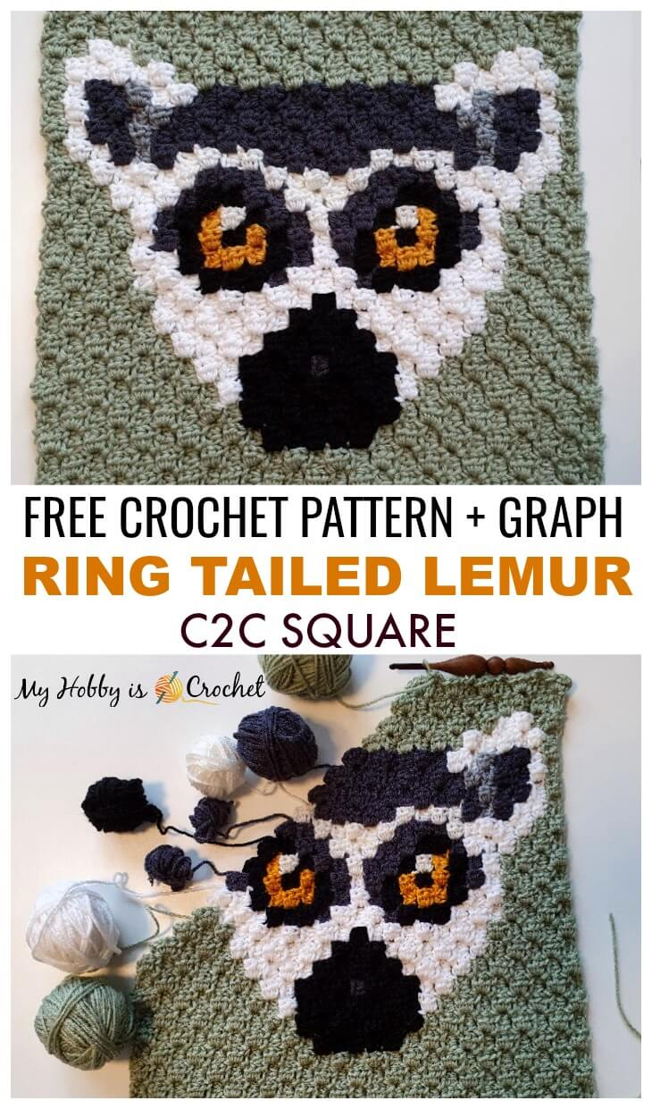 Ring Tailed Lemur C2C Square