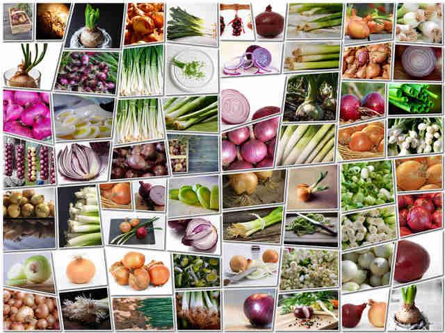 تحميل 65 صورة لجميع أنواع البصل بجودة عالية