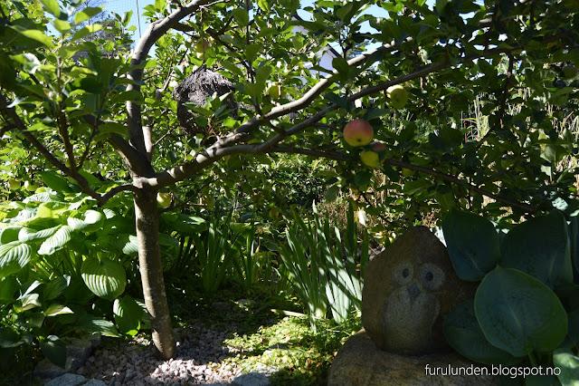 Stilleben under epletre