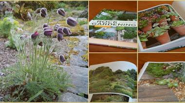 Rock gardening, un libro y un nuevo enfoque del jardín de rocas