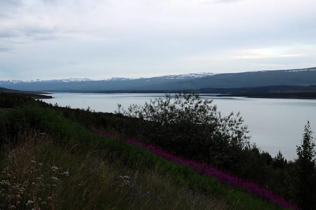 Wyrm legenda islandzka