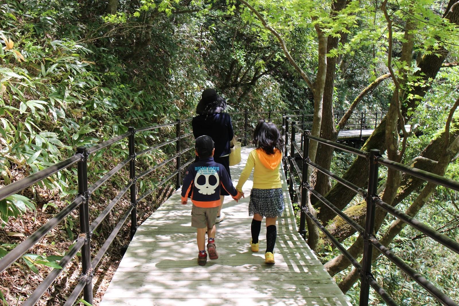 高さ45m長さ160mの「舌震恋吊り橋」で気を失ってきた。島根県、奥出雲「鬼の舌震」観光