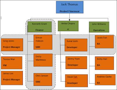 Matrix organization structure, Matrix Team Structure
