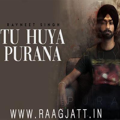 Tu Hua Purana by Ravneet Singh lyrics