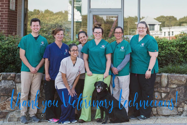 National Veterinary Technician Appreciation Week