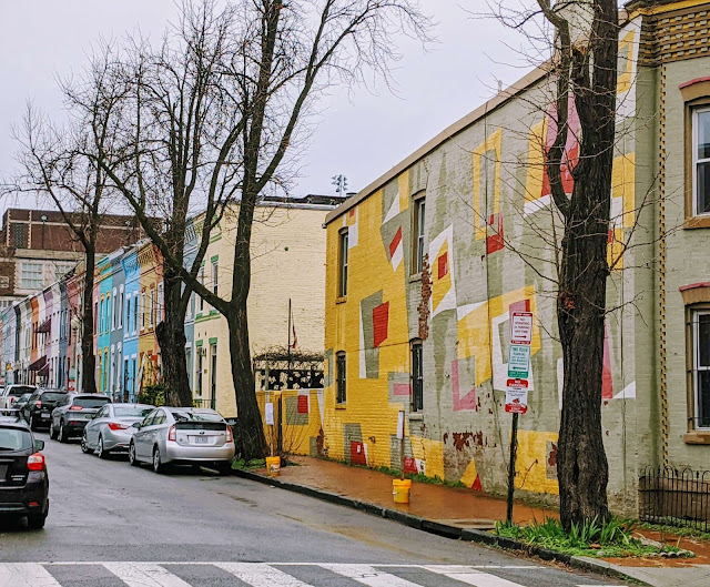Colorful row houses in DC