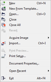 File Menu Options image