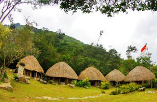 Desain Rumah Adat Papua Terpopuler 1