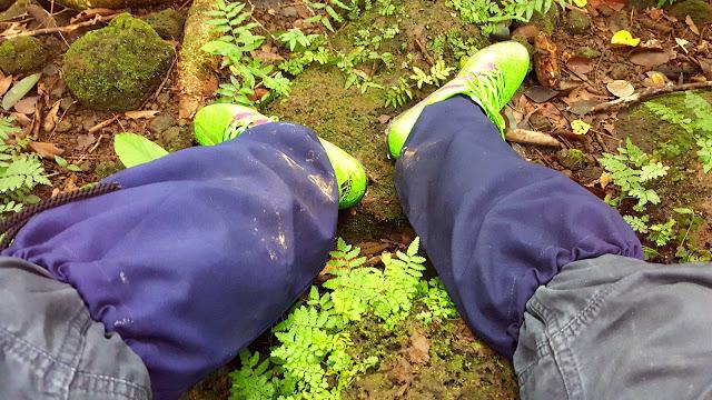 Trang bị căn bản cho một chuyến đi rừng vào mùa mưa
