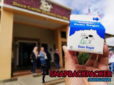 Susu Segar Dairy Farm Kundasang