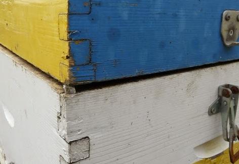 Δεύτερη είσοδος στα μελίσσια: Πως ακριβώς γίνεται; Πατέντες μελισσοκόμων