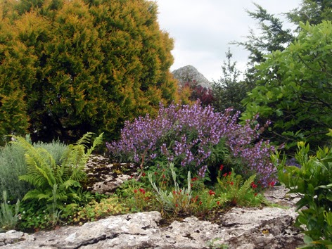 jardín de roca