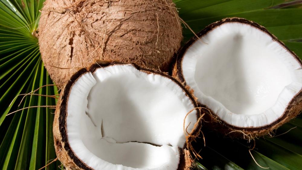 Kokosjoghurt - die gesunde Alternative zu Soja & Co.