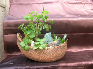 Boat pot with plants ahmedabad