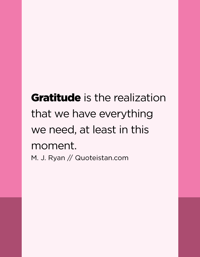 Gratitude is the realization that we have everything we need, at least in this moment.