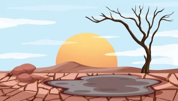 Pencemaran Tanah, Dampak, dan Cara Mengatasinya