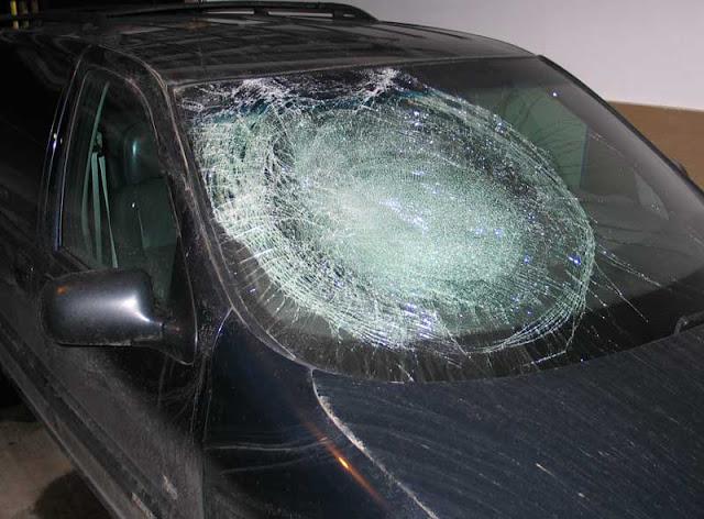 windshield.70124917_std