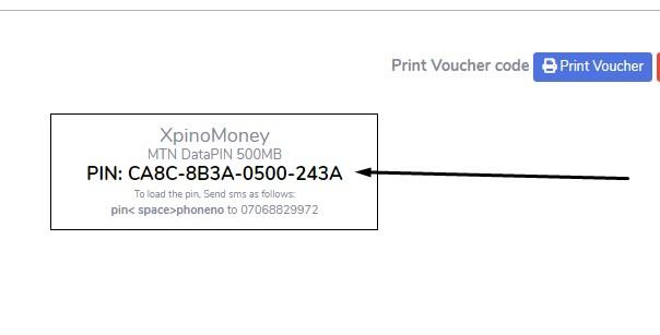 PRINT MTN DATA PINS, xpinomoney