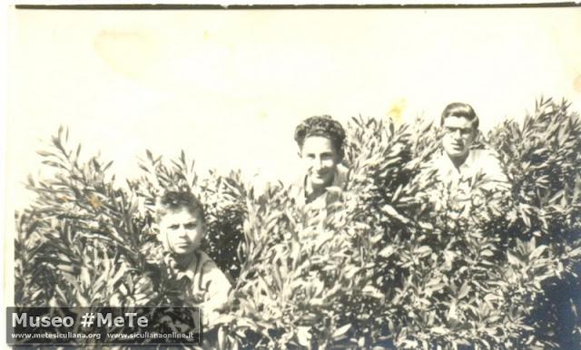 Giuseppe, Silvio e Manlio Basile presso Siculiana Marina 1952.
