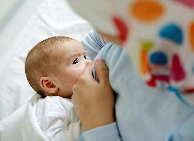 menyusui anak baru lahir