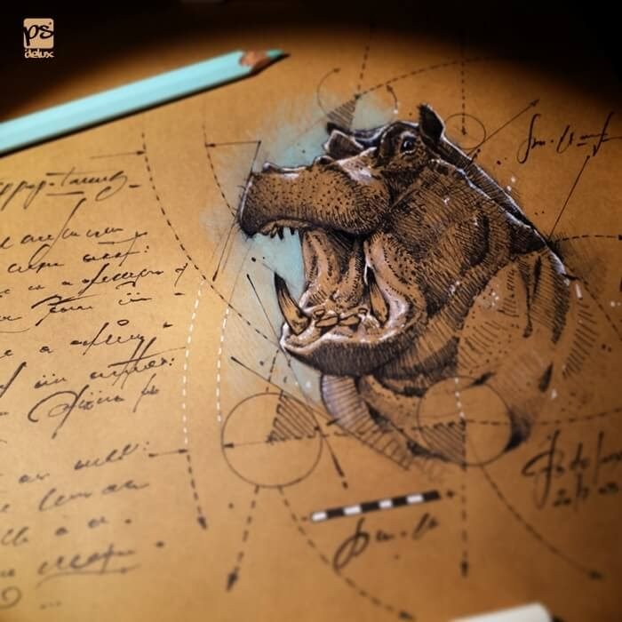 07-Hippo-psdelux-Geometric-Animal-Sketches-and-1-Alien-www-designstack-co