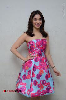 Actress Tamanna Latest Images in Floral Short Dress at Okkadochadu Movie Promotions  0057.JPG