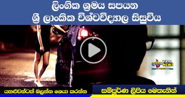 Sri Lankan University Girl Works as A Prostitute