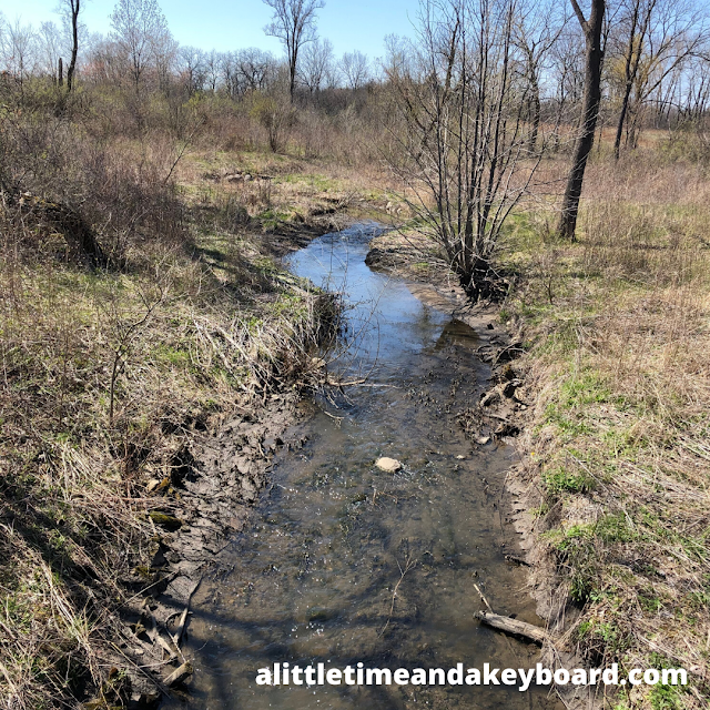 Picturesque creek views are natural treats at Heron Creek Forest Preserve