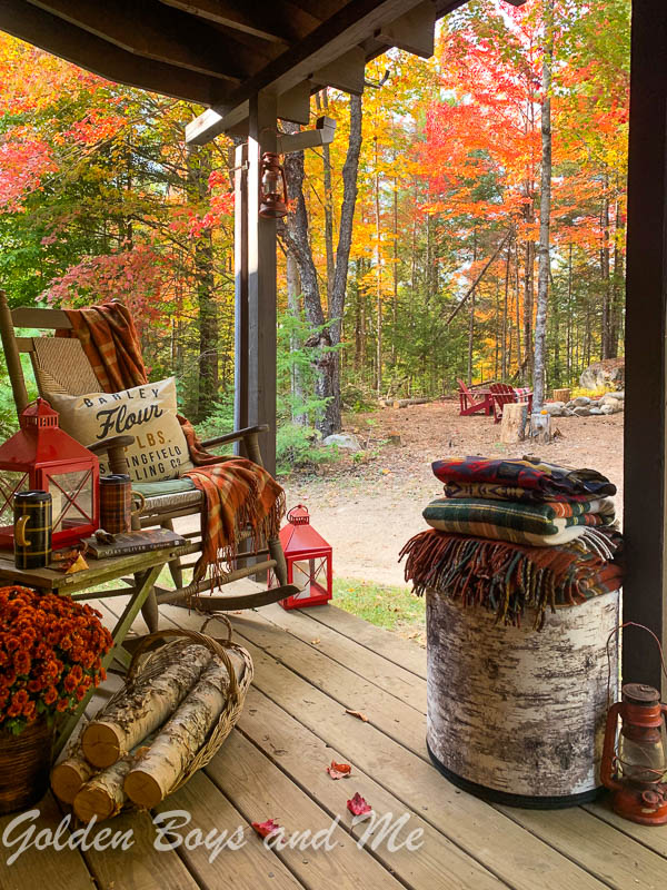 Fall foliage at cabin in the woods - www.goldenboysandme.com