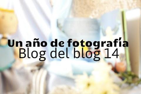 Un año de fotografía - 2