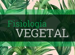 fisiologia vegetal resumo fisiologia das plantas
