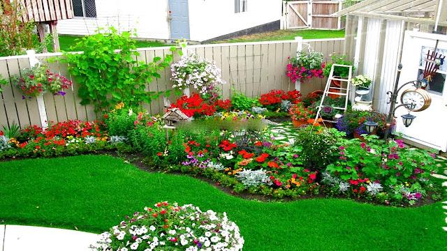 Best landscaping plants