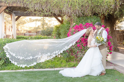 bride and groom photo with veil blowing in wind