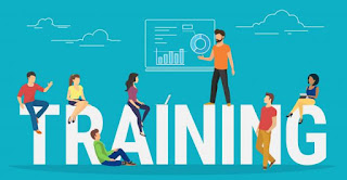 Training and development how to make your team more productive and efficient!