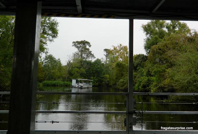 Navegação em um pântano da Luisiana próximo a Nova Orleans
