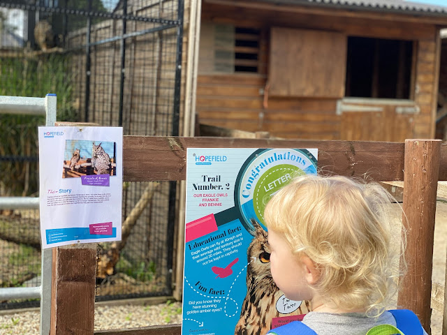 Looking at some information about an owl at Hopefield Animal Sanctuary