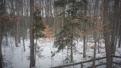 Snow in Virginia.
