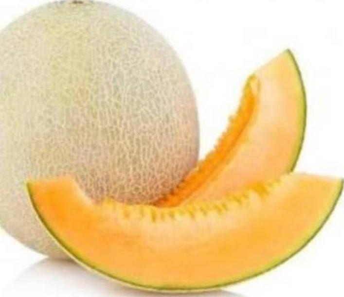 Benih Melon Jepang Glamour Repack 10 btr Biji Buah Glamor Sakata Jakarta