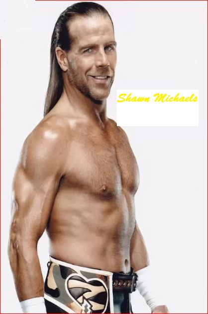 Shawn Michaels HD Wallpaper 2560x1440