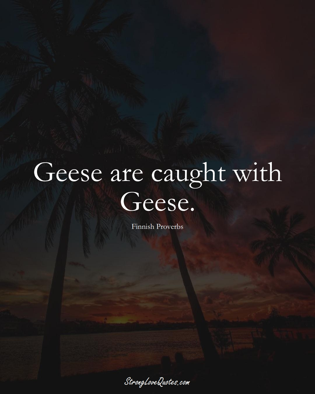 Geese are caught with Geese. (Finnish Sayings);  #EuropeanSayings