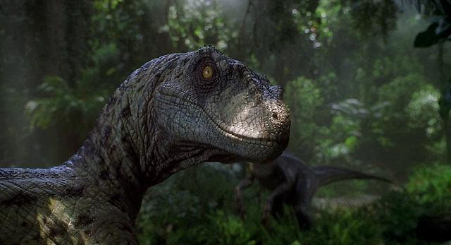 Jurassic Park III (2001) Dual Audio [Hindi-DD5.1] 720p BluRay ESubs Download