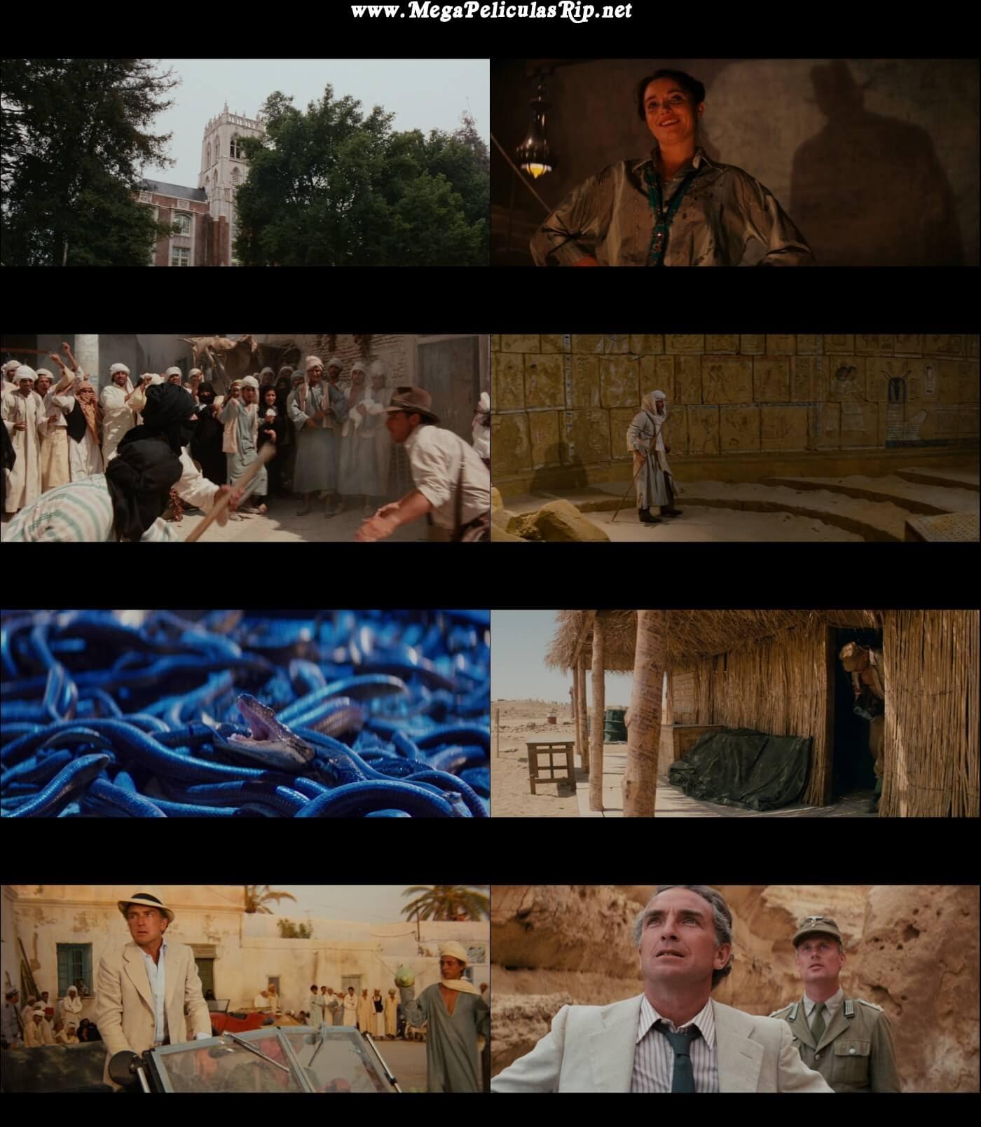 Indiana Jones Y Los Cazadores Del Arca Perdida 1080p Latino